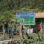 Nebaj Salquil Grande aldea prevent forest fires sign