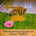 Nebaj honey cooperative